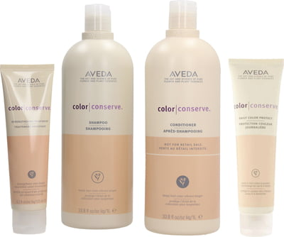 Aveda Color Conserve Set Big