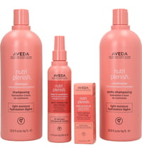 Aveda Nutriplenish Light Set Big