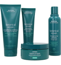 Aveda Botanical Repair Rich Set