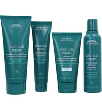 Aveda Botanical Repair Light Set