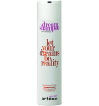 Artego Easy Care T Dream Shampoo