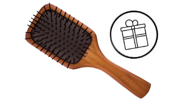 Regalo di AVEDA: Mini Paddle Brush
